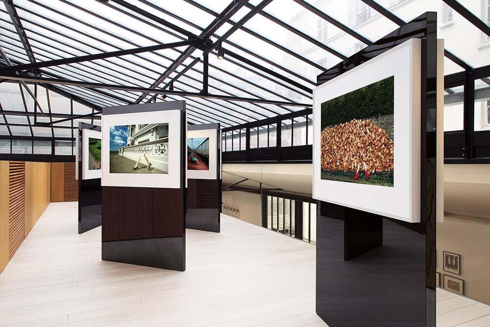 Studio des Acacias